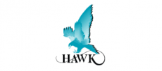 Hawk Measurements System
